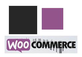 E commerce WordPress webshop